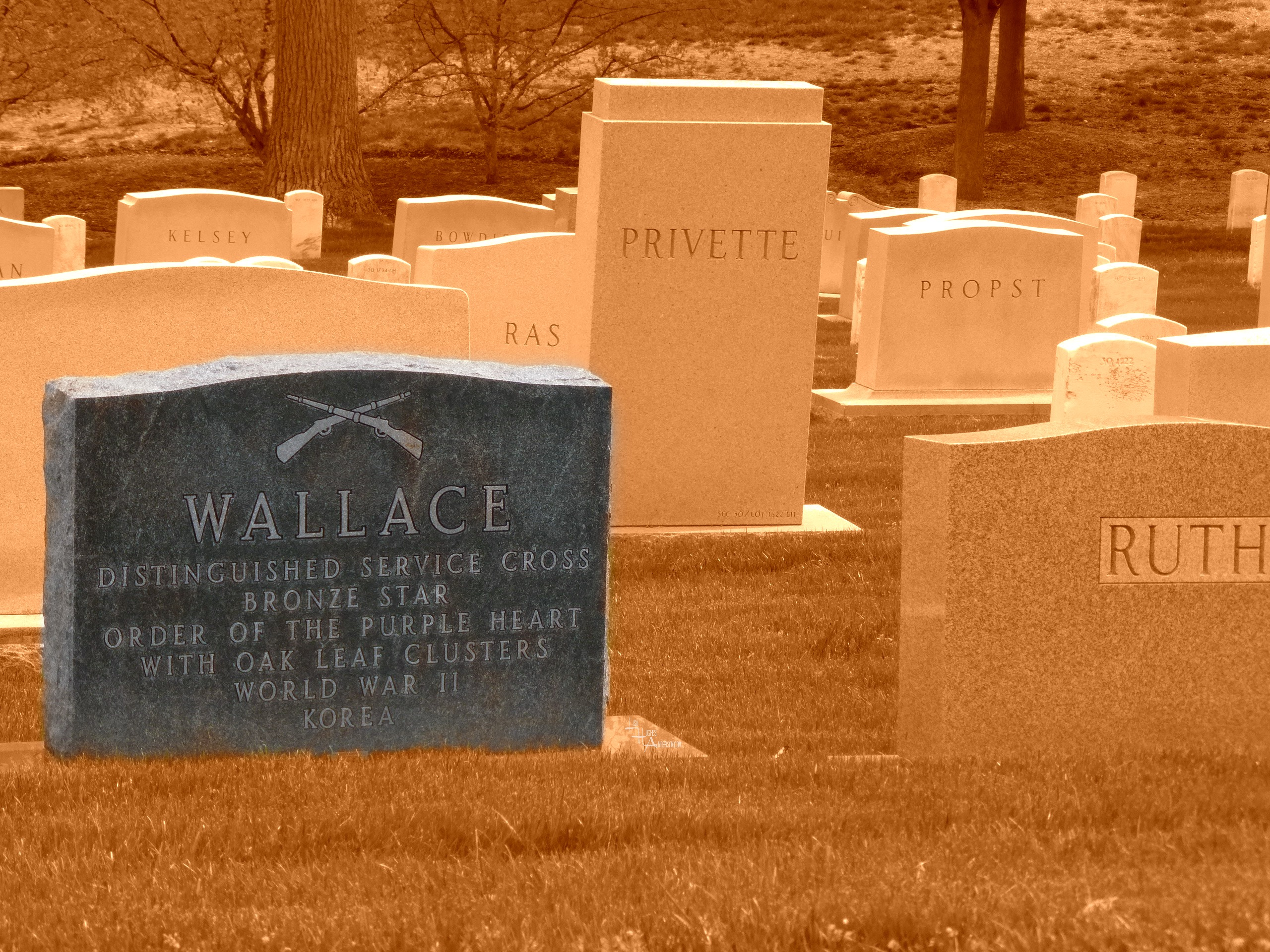 WALLACE TOMBSTONE PURPLE HEART
